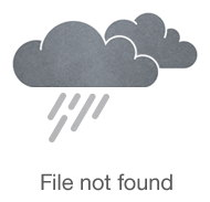 Giving Day for Apes